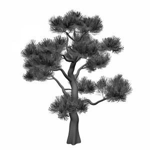 مدل سه بعدی درخت جنگلی