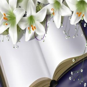 لایه باز کتاب و گل های لیلیوم