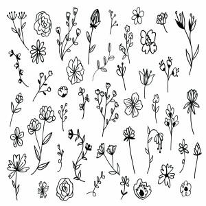 لایه باز مجموعه گل های کشیده شده با دست