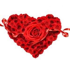 عکس گل های زر قلبی